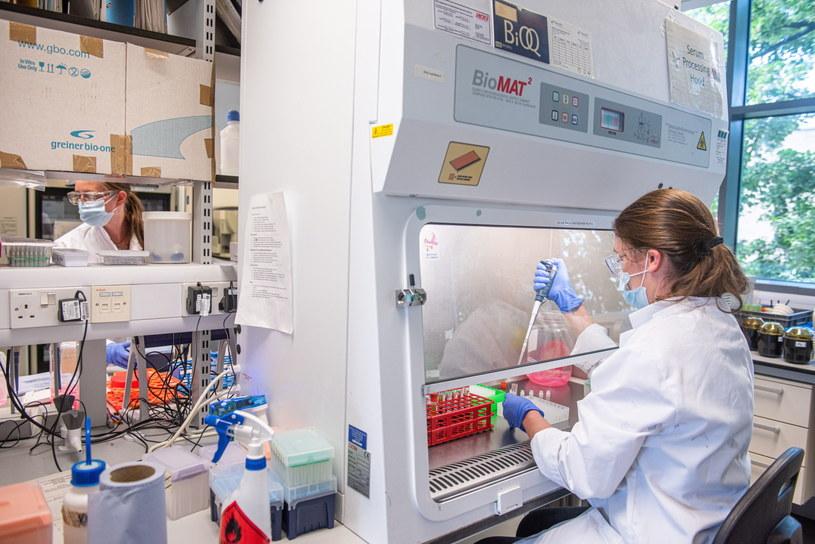 Praca nad szczepionką w laboratoriach Uniwersytetu Oksfordzkiego / JOHN CAIRNS /PAP/EPA