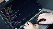 Praca w IT: Walka o informatyków trwa