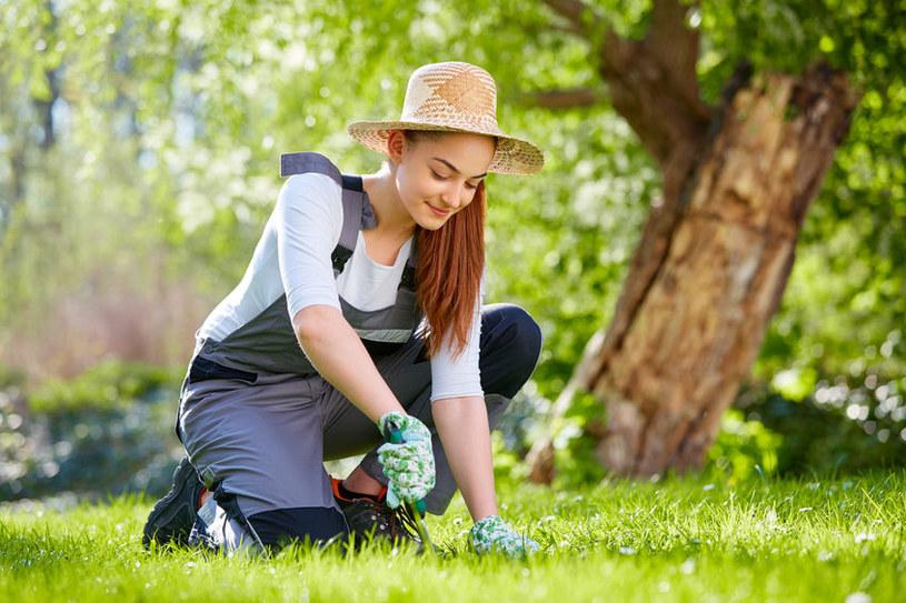 Praca w ogrodzie /©123RF/PICSEL