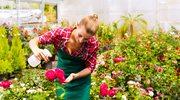 Praca za granicą: Oferty specjalnie dla kobiet