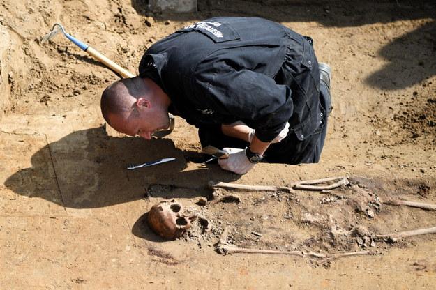 Prace archeologiczne na cmentarzu komunalnym w Hruszowicach /Darek Delmanowicz /PAP