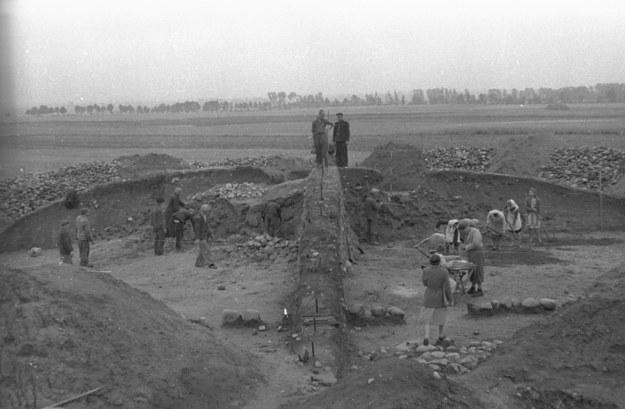 Prace archeologiczne w Biskupinie na zdj. z 1947 roku /CAF /PAP