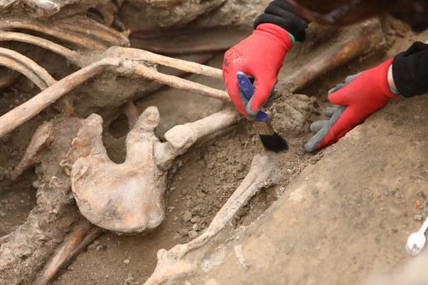 Prace ekshumacyjne IPN - odnaleziono szczątki kolejnych osób (zdjęcie ilustracyjne) /Stanisław Kowalczuk /East News