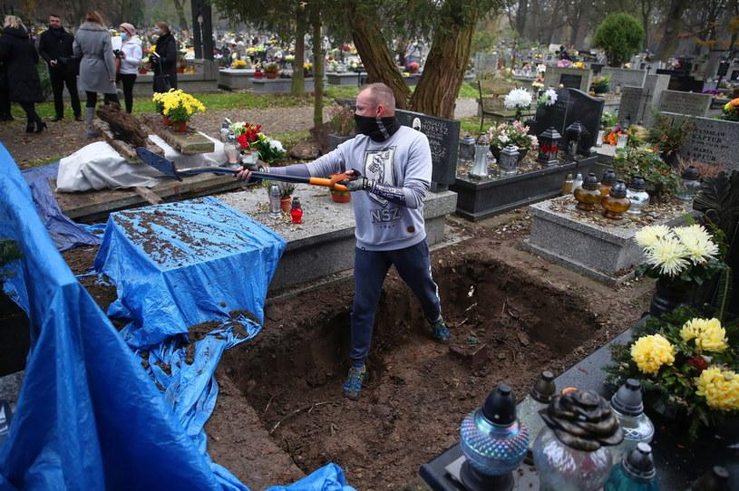 Prace ekshumacyjne na Cmentarzu Rakowickim w Krakowie //Łukasz Gągulski /PAP