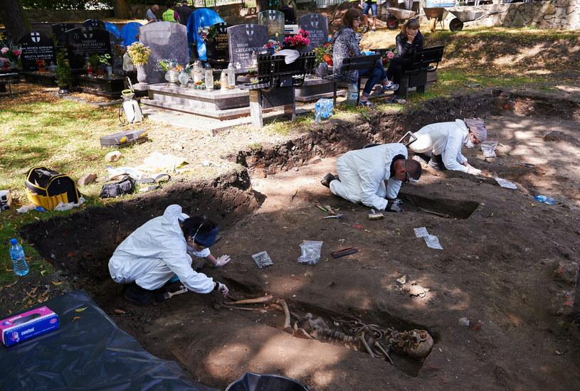 Prace na cmentarzu /Adam Warżawa /PAP