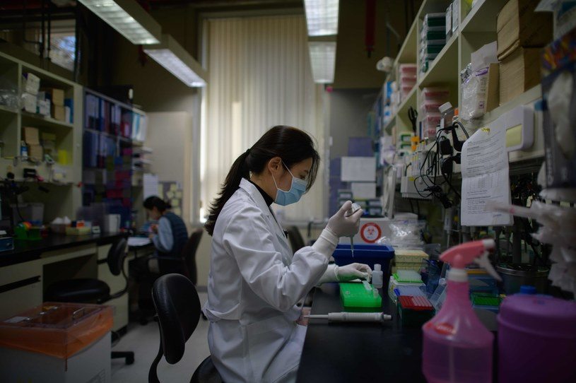 Prace nad szczepionką trwają w wielu krajach /AFP