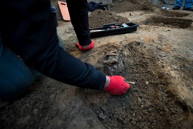 Prace poszukiwawczo-ekshumacyjne (zdjęcie ilustracyjne) /IPN