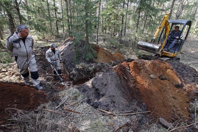 Prace prowadzone były w pobliżu drogi leśnej Giby-Rygol /Artur Reszko /PAP