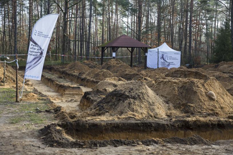Prace w pobliżu obozu Treblinka I /Marek Maliszewski  /Reporter