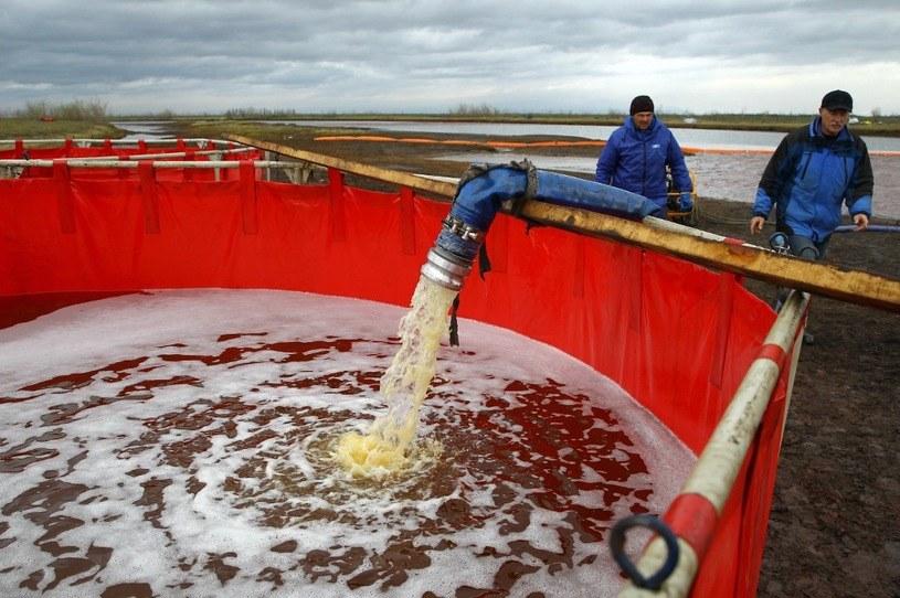 Pracownicy firmy petrochemicznej wypompowują zanieczyszczającą rzekę olej . /AFP