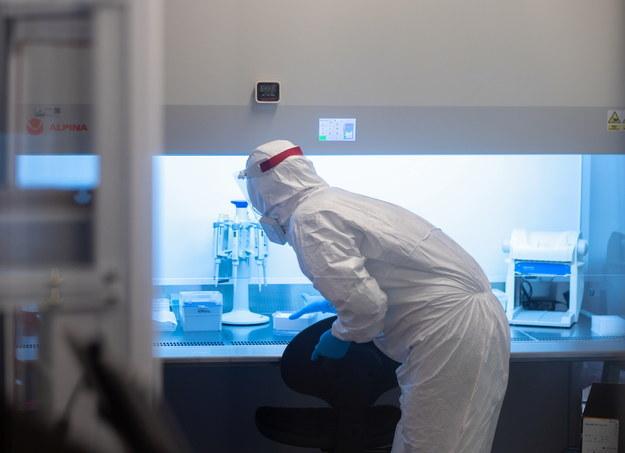 Pracownicy laboratorium w Sosnowcu zajmują się wyodrębnianiem mutacji koronawirusa /Andrzej Grygiel /PAP