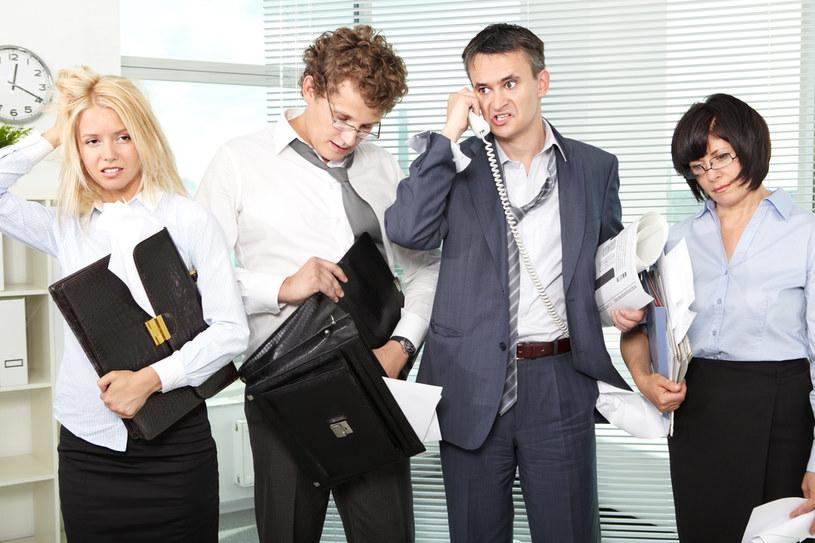Pracownicy zarządów firm /© Photogenica