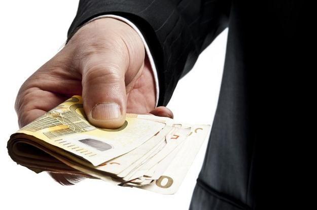 Pracując w Holandii za minimalną stawkę jesteś w stanie odłożyć 700-800 euro miesięcznie /123RF/PICSEL