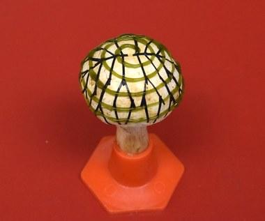 Prąd z grzybków, czyli nano-cyjano-pieczarki...