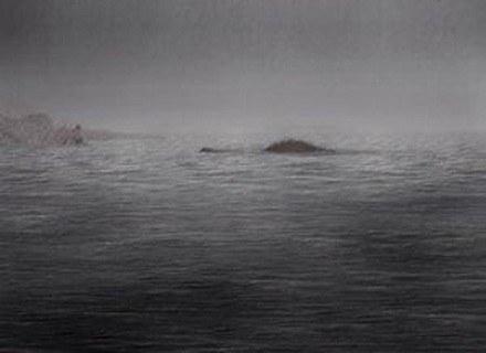 Prawda, że to musi być Nessie? /MWMedia
