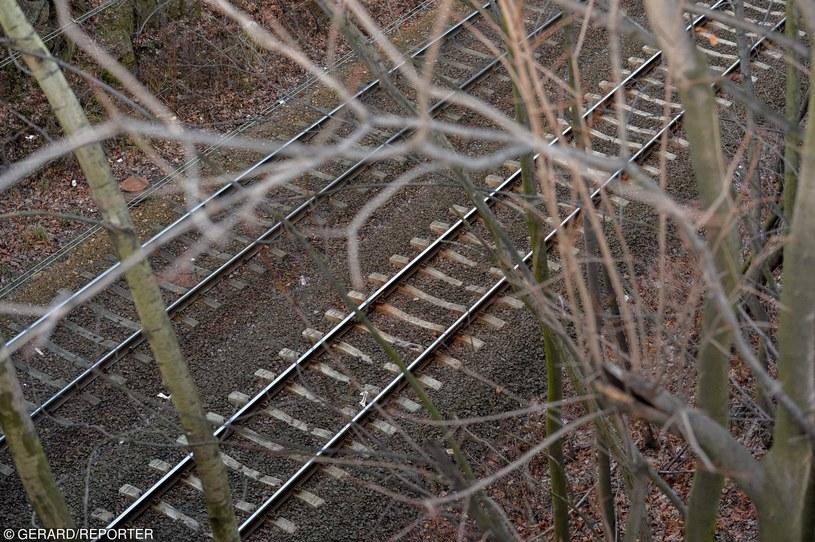Prawdopodobne miejsce ukrycia złotego pociągu w Wałbrzychu na 65. kilometrze trasy Wrocław-Jelenia Góra /Fot. Gerard/REPORTER /East News