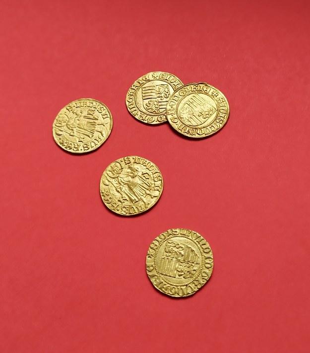 Prawdopodobnie przed wiekami ktoś próbował ukryć monety w pośpiechu /Muzeum Regionalne w Lubaniu /