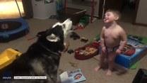Prawdziwa przyjaźń dwulatka i jego psa. Wspólnie nawet wyją do księżyca!