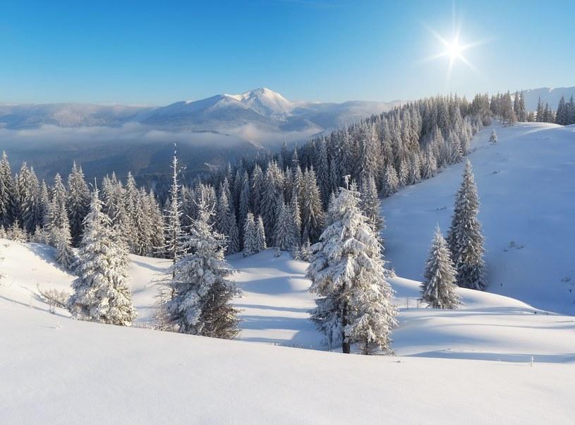 Prawdziwa zima zbliża się do nas wielkimi krokami /123RF/PICSEL