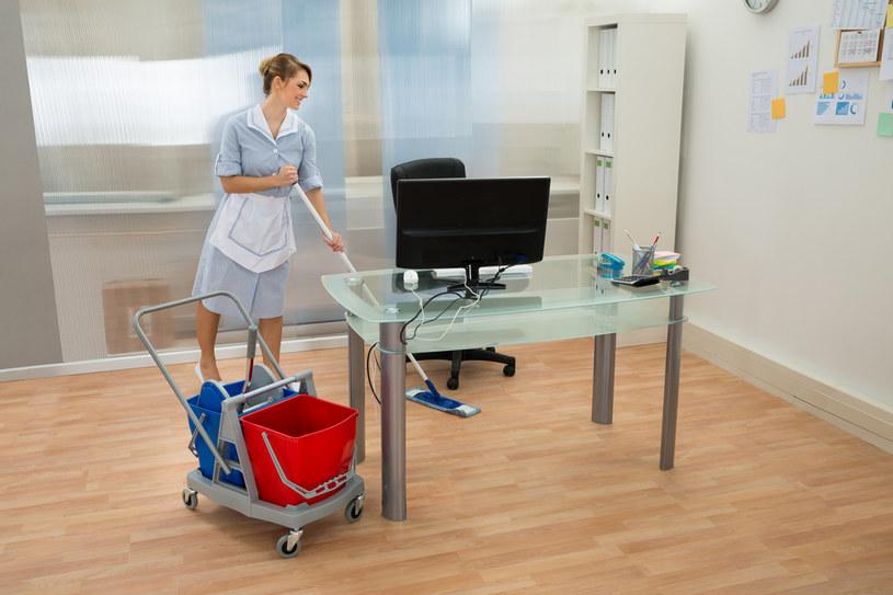 Prawdziwe eldorado w sektorze sprzątania domowego /123RF/PICSEL