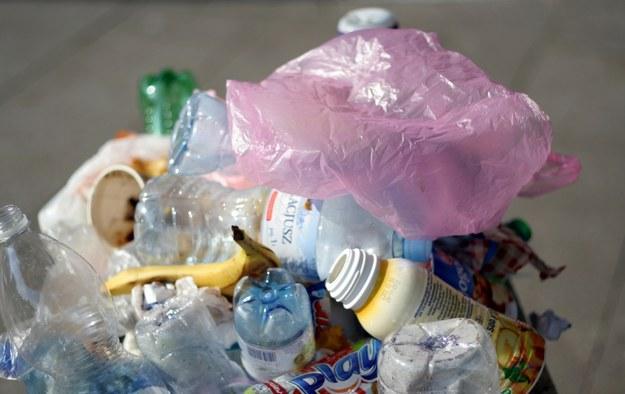 Prawie dwa razy więcej zapłacą łodzianie za wywóz śmieci od nowego roku /Archiwum RMF FM