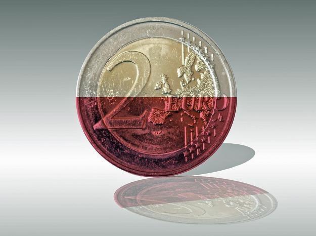 Prawie dwie trzecie Polaków nie chce zamieniać złotówki na euro /©123RF/PICSEL