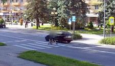 Prawie przejechała dziecko na pasach. Policja ją odnalazła