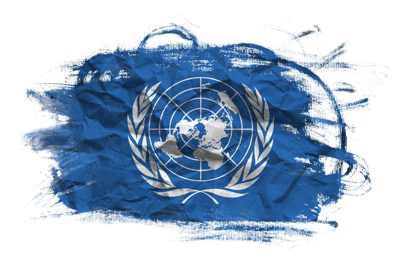 """Prawo i Sprawiedliwość czaruje Organizację Narodów Zjednoczonych - pisze """"Rzeczpospolita"""" /123RF/PICSEL"""