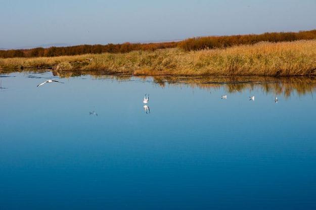 Prawo Unii Europejskiej zakłada wprowadzenie opłat za korzystanie z wody /©123RF/PICSEL