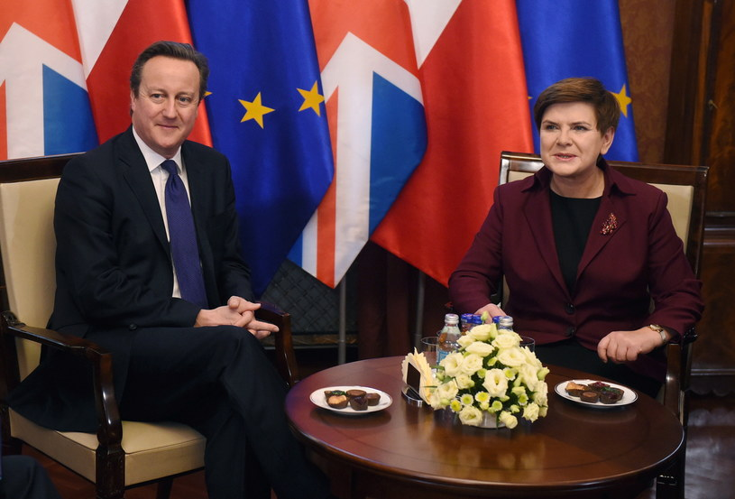 Premier Beata Szydło i premier Wielkiej Brytanii David Cameron /Radek Pietruszka /PAP