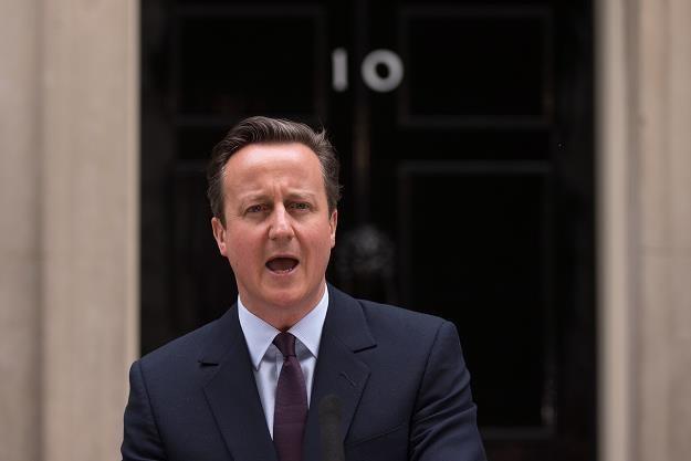 Premier David Cameron - szef Partii Konserwatywnej /AFP