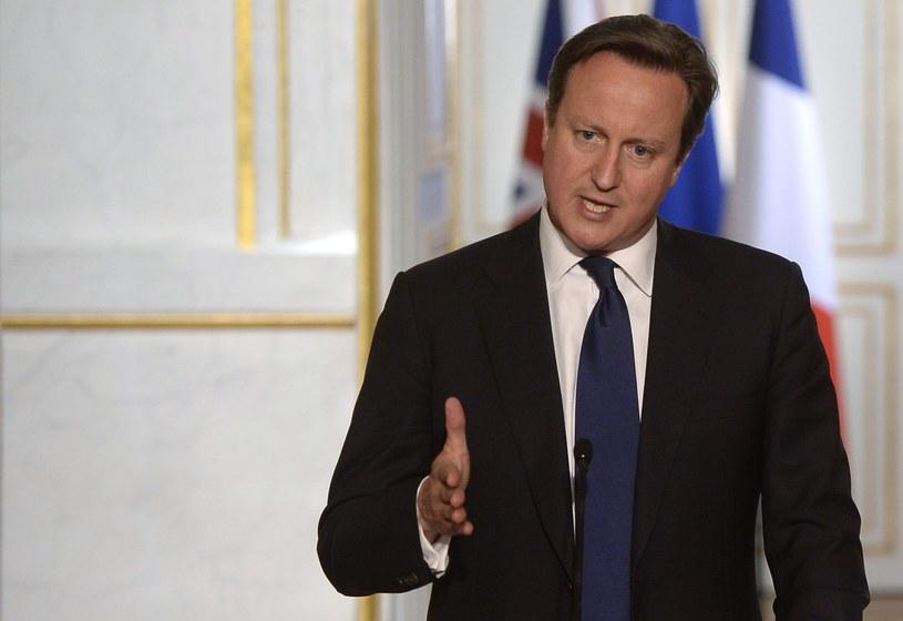 Premier David Cameron /Christophe Karaba /PAP/EPA