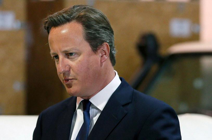 Premier David Cameron /AFP