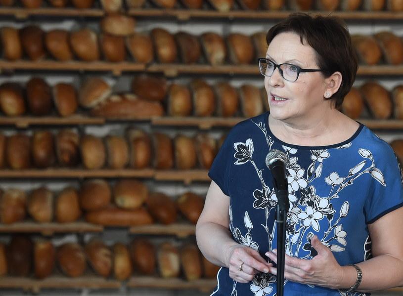 Premier Ewa Kopacz w trakcie wizyty w Wielkopolsce odwiedza drobnych przedsiębiorców /Radek Pietruszka /PAP