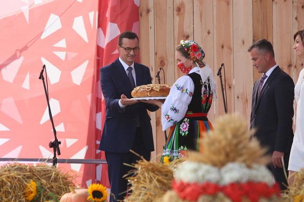 Premier Mateusz Morawiecki podczas Ogólnopolskiego Święta Wdzięczni Polskiej Wsi w  Bralinie /Tomasz Wojtasik /PAP