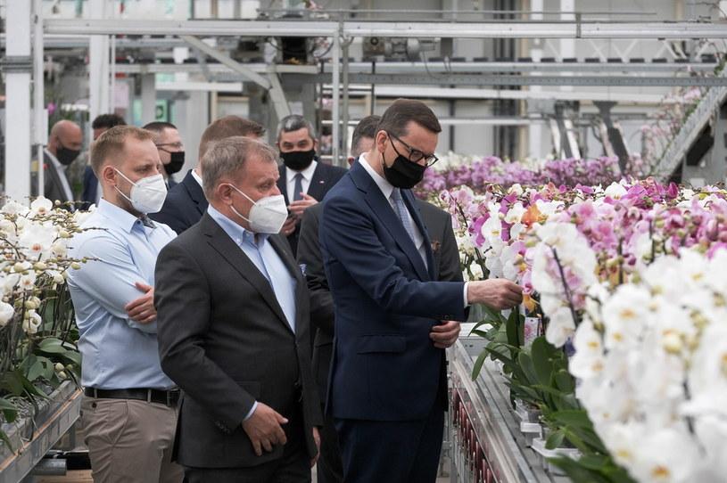 Premier Mateusz Morawiecki podczas wizyty w firmie JMP Flowers w Stężycy /Fot. Mateusz Marek /PAP