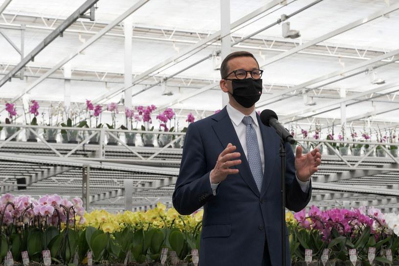 Premier Mateusz Morawiecki podczas wizyty w firmie JMP Flowers w Stężycy /Mateusz Marek /PAP