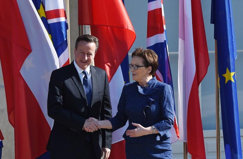 Premier RP Ewa Kopacz i premier Wielkiej Brytanii David Cameron /Radek Pietruszka /PAP /PAP