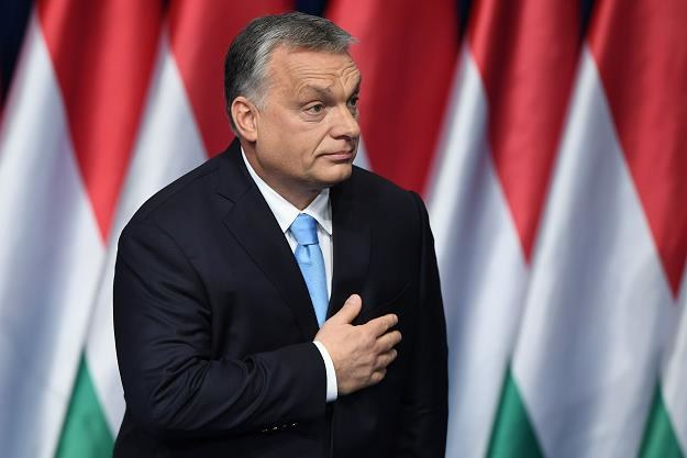 Premier Viktor Orban zachęca kobiety do rodzenia /AFP