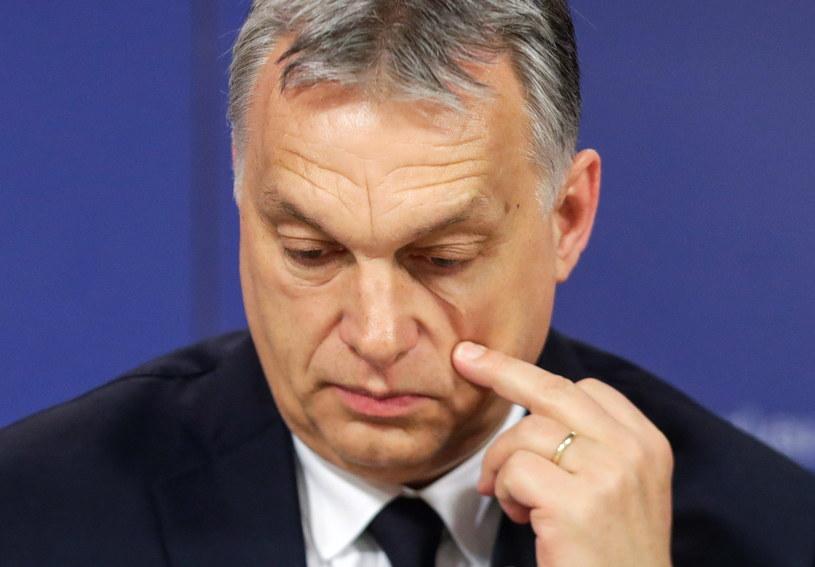Premier Węgier Viktor Orban /STEPHANIE LECOCQ  /AFP