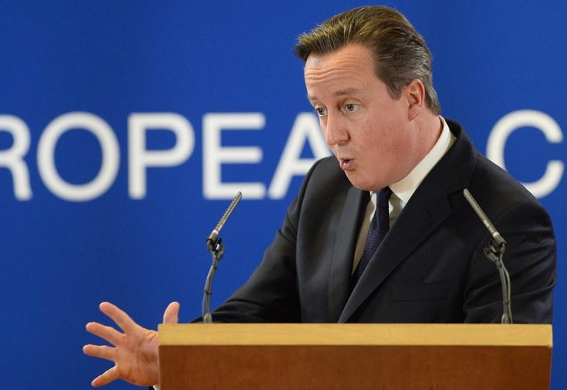 Premier Wielkiej Brytanii David Cameron /AFP