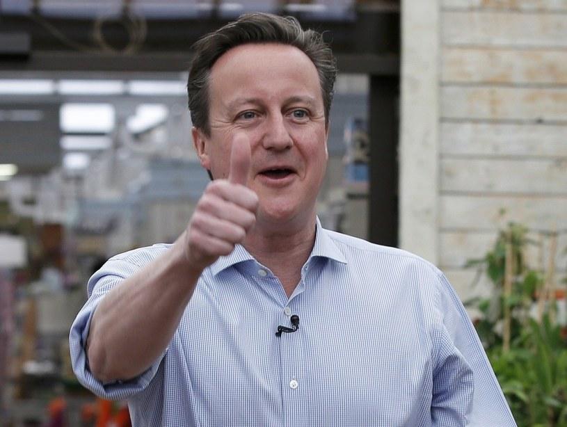 Premier Wielkiej Brytanii David Cameron /PETER NICHOLLS /East News