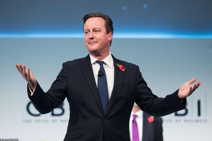 Premier Wielkiej Brytanii David Cameron /Leon Neal /East News