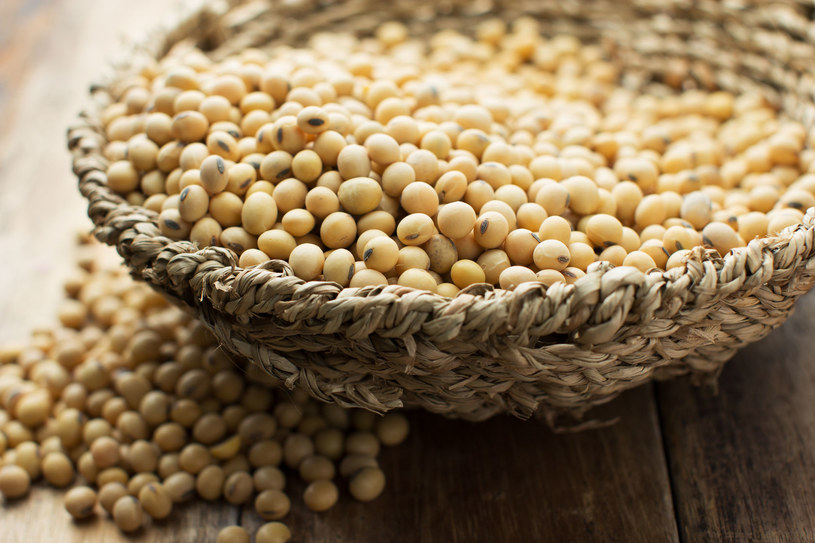 Preparaty z nasion soi mają plusy i minusy stosowania /123RF/PICSEL