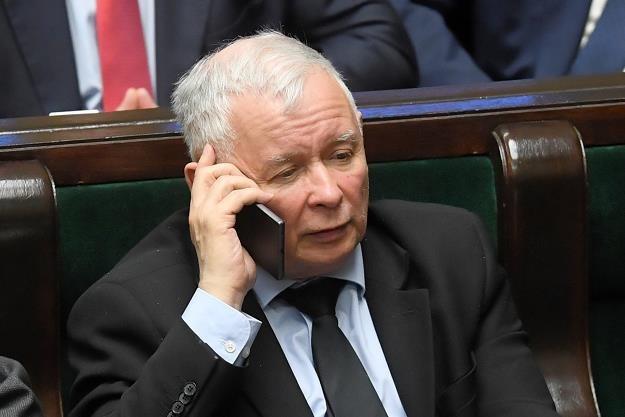 Prezes Prawa i Sprawiedliwości Jarosław Kaczyński /PAP