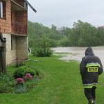 Prezes Wód Polskich: W tym roku nie zanosi się na powodzie