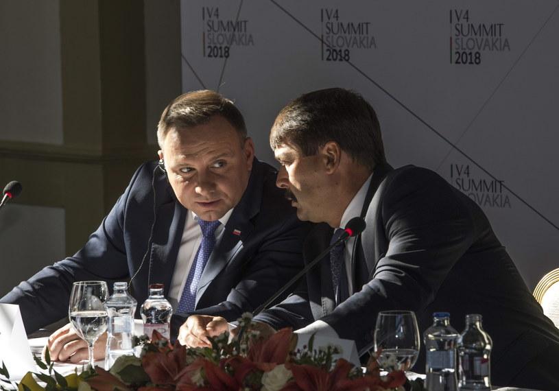Prezydent Andrzej Duda i prezydent Węgier Janos Ader /ZOLTAN MATHE /PAP/EPA
