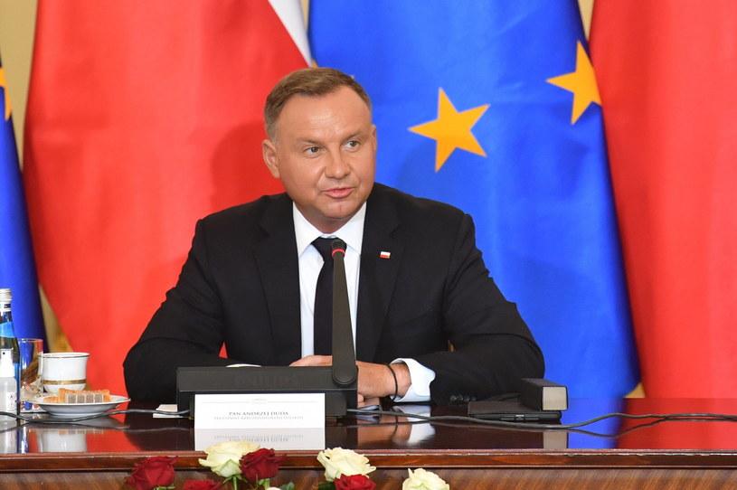 Prezydent Andrzej Duda na obradach Rady Gabinetowej /Radek Pietruszka /PAP