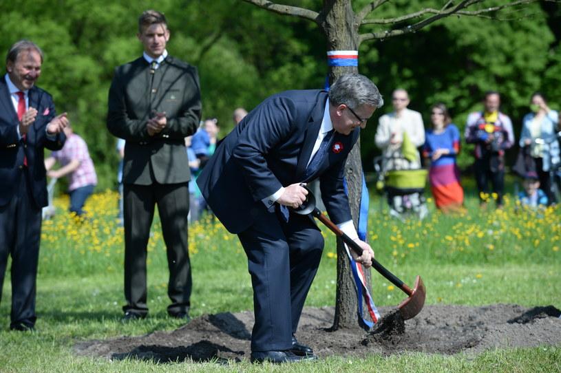Prezydent Bronisław Komorowski podczas Pikniku Europejskiego /Jacek Turczyk /PAP