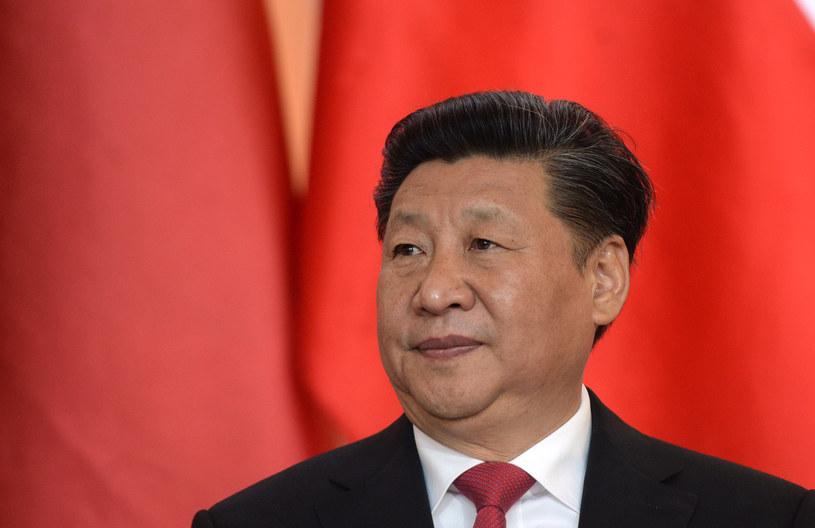 Prezydent Chin Xi Jinping /MICHAL CIZEK /AFP